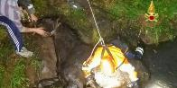 Verona, salvato un cavallo caduto in un fossato a Roncà