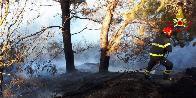 Ancona, incendio sterpi a Portonovo