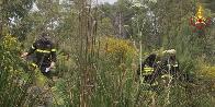 Erice: esercitazione TAS presso demanio forestale di località San Matteo