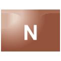 Disegno di un'ogiva di colore marrone rossiccio con una lettera N vernicitata sopra