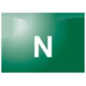 Disegno di un'ogiva di colore verde scuro con una lettera N vernicitata sopra